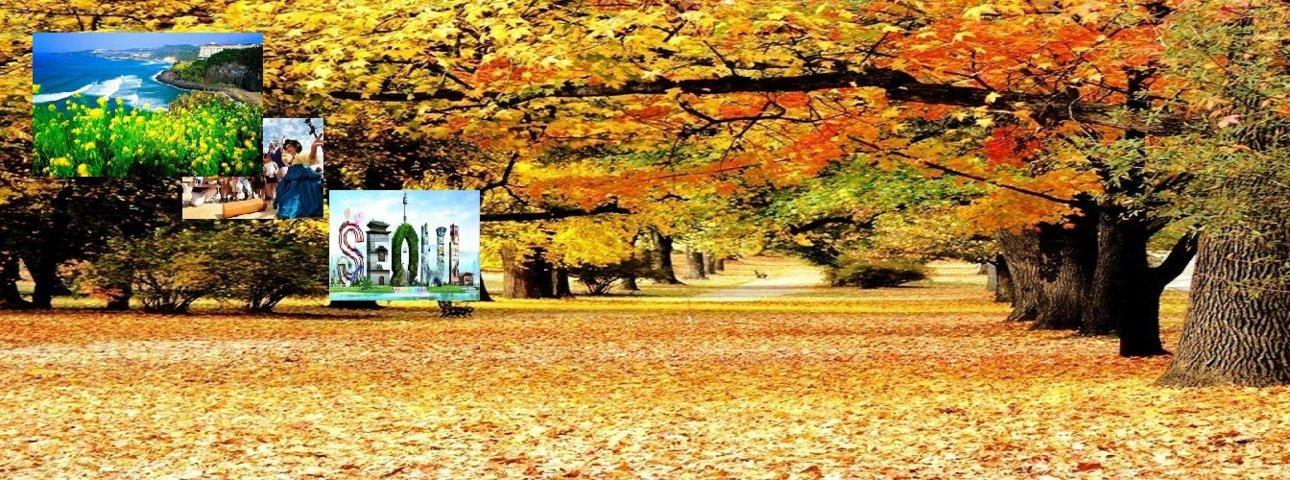 Ha Noi - Seoul - Nami- Everlland - sieu Khuyen mai Hang khong Jeju - nghi 1 dem khach san 5 sao
