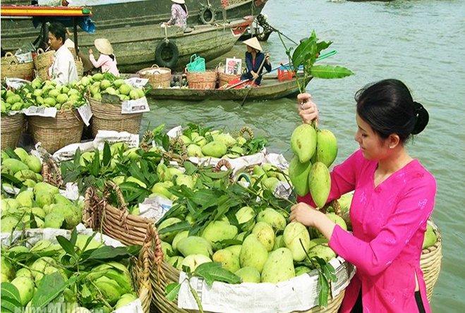 Hà Nội - Hồ Chí Minh - Tây Ninh - Cần Thơ