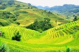 Hà Nội - Mai Châu - Sơn La - Điện Biên