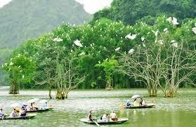 Hà Nôi - chùa Bái Đính - kênh Gà - động Vân Trình